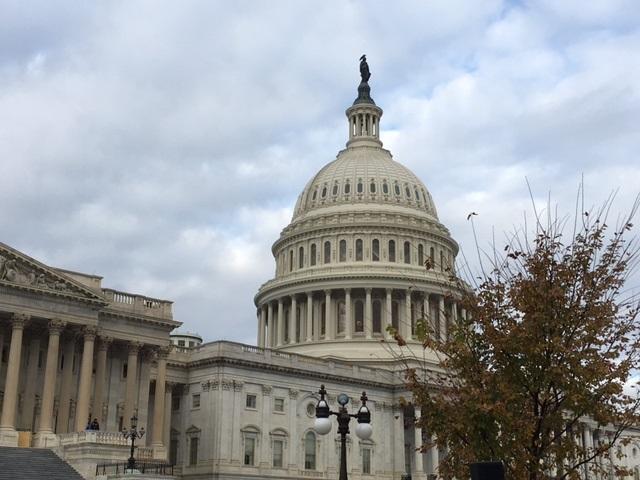 U.S. Capitol_324998
