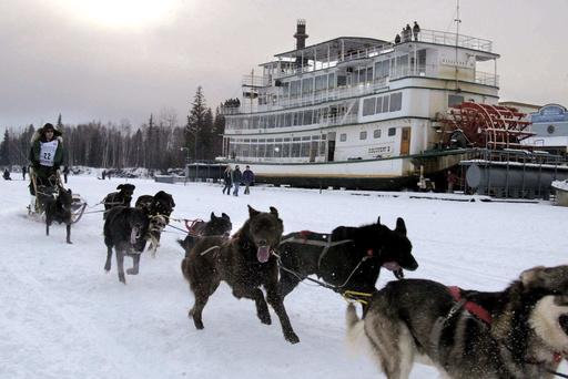 Iditarod-Things to Know_355366