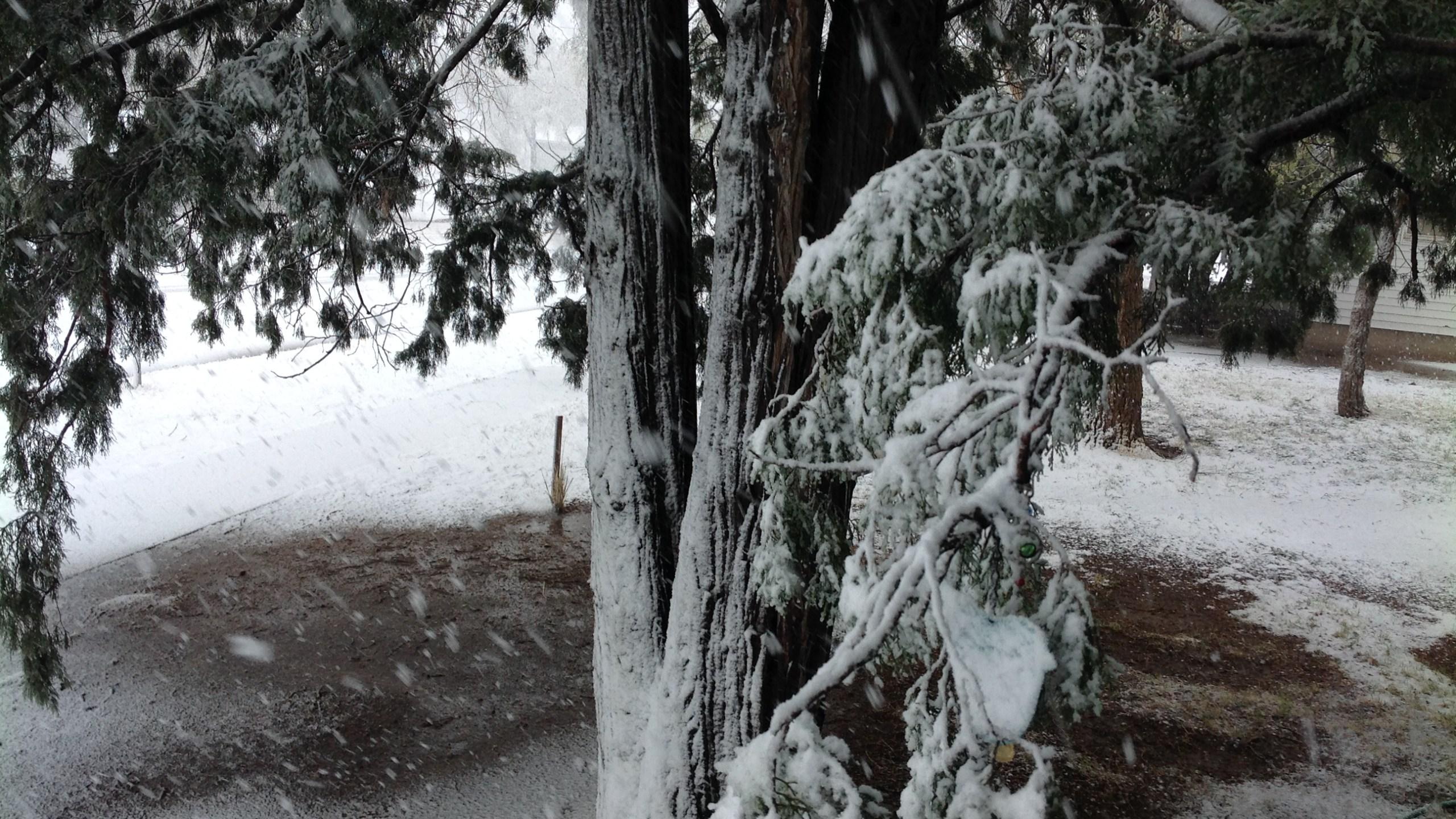 Elkhart snow, Joan Bolin_368580