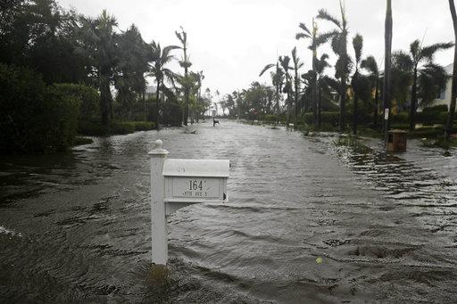 Hurricane Irma_444392