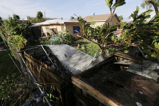 Hurricane Irma Cleaning Up_444663