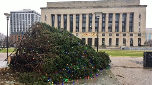Toppled Christmas Tree_495229