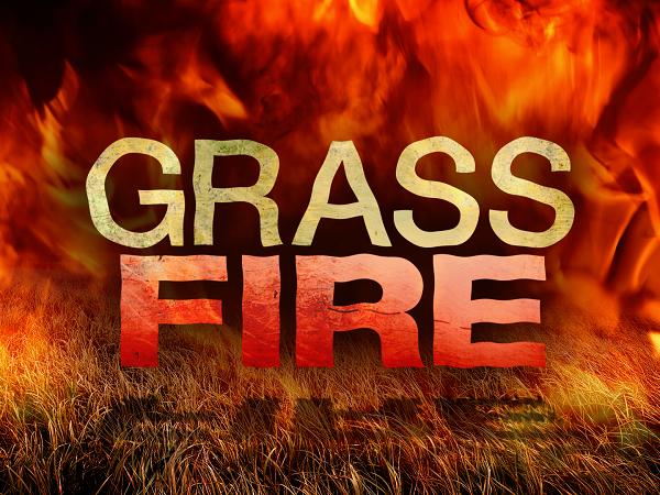 Grass Fire 2.jpg