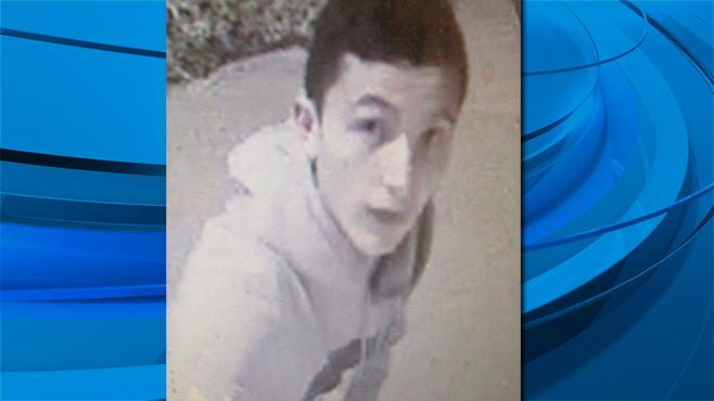 McAdams Park Suspect_1522252667702.jpg.jpg