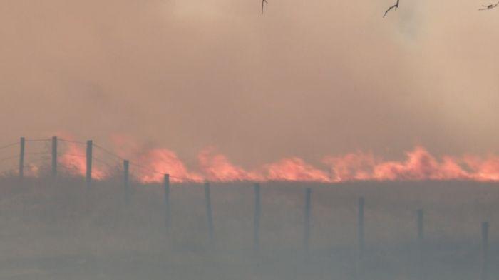 wildfire_357643