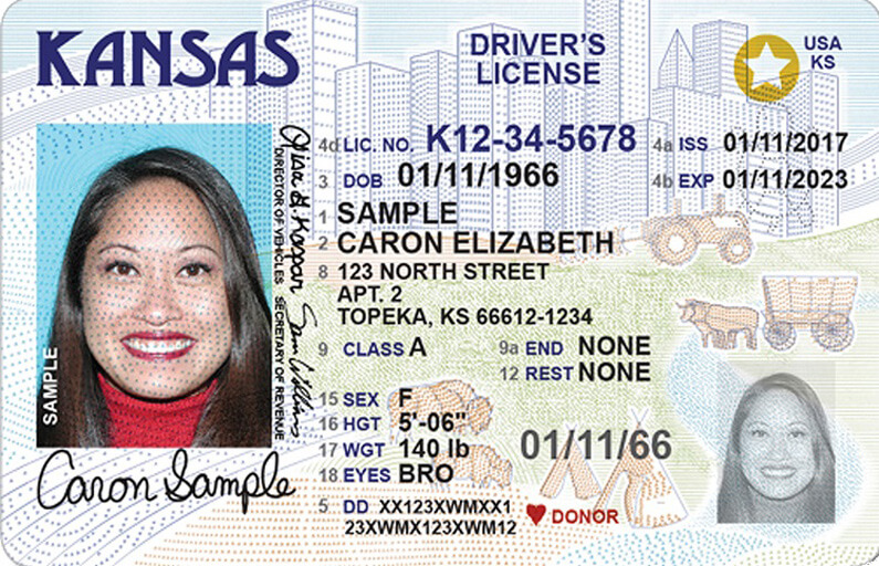 Kansas sample driver's license