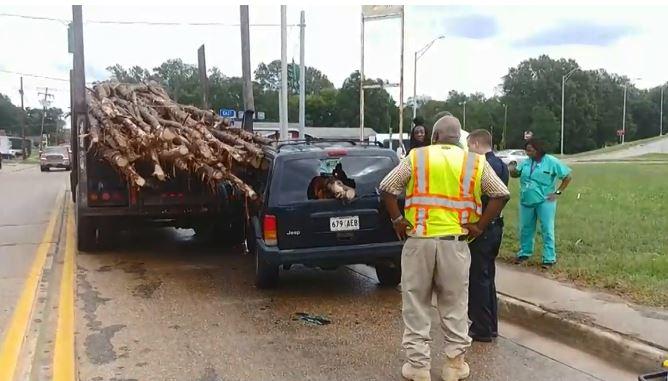 log truck crash_1539137336890.JPG.jpg