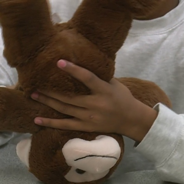 Group_works_to_provide_stuffed_animals_t_0_20181119211035