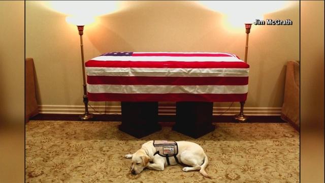 Bush_s_service_dog_missing_his_best_frie_0_63955307_ver1.0_640_360_1543844615110.jpg