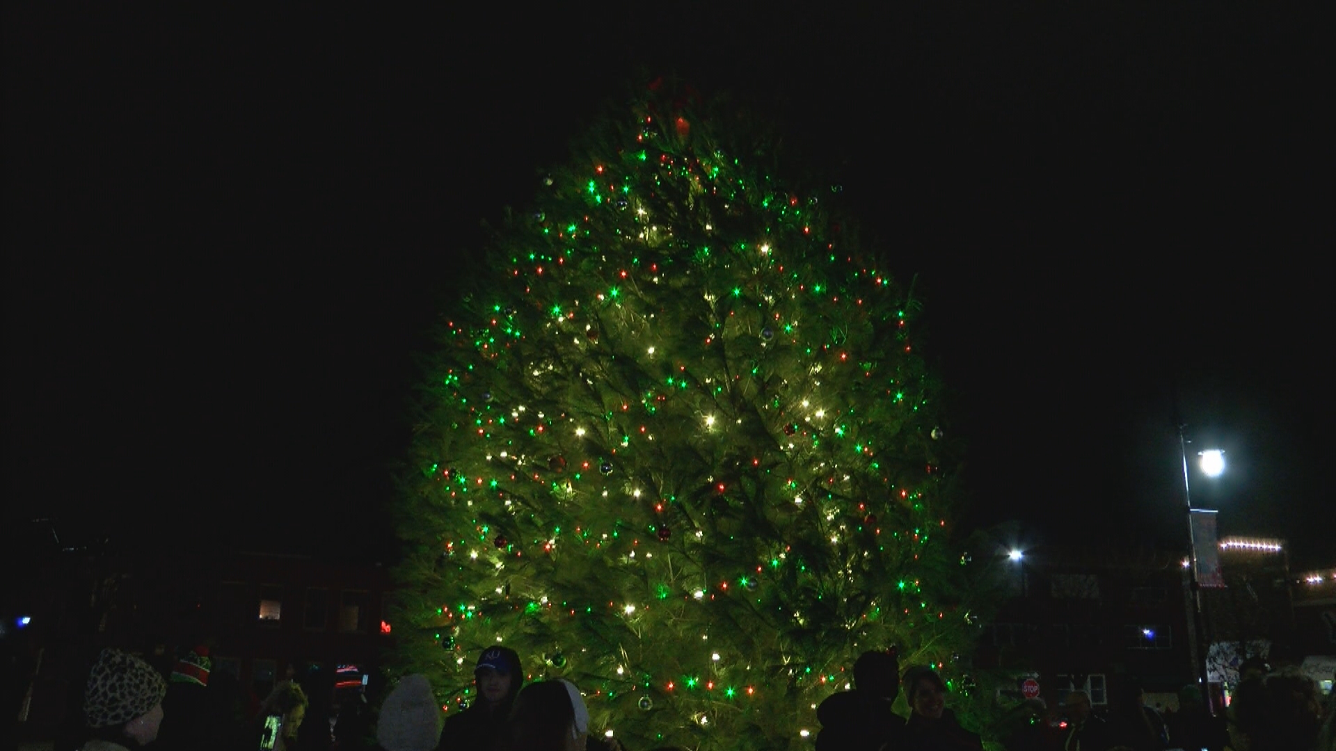 Tree Lighting-WIPE VO-1.transfer_frame_1342_1543803769368.jpg.jpg