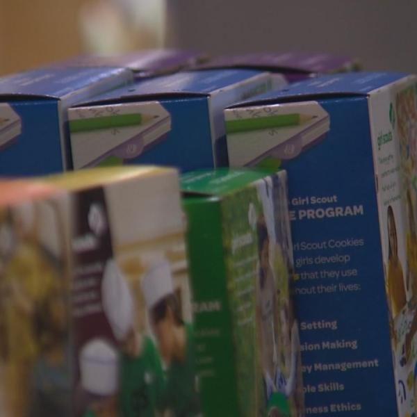 Man steals $600 from Girl Scout cookie booth