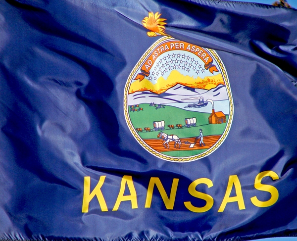 Kansas Flag Waving_1554660884612.jpg.jpg